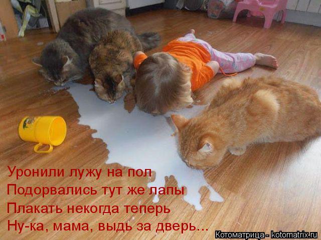 Котоматрица: Уронили лужу на пол Подорвались тут же лапы Плакать некогда теперь Ну-ка, мама, выдь за дверь...