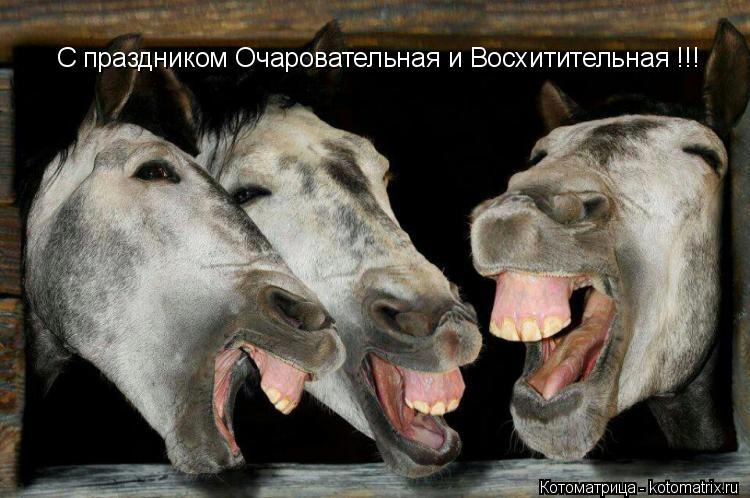Котоматрица: С праздником Очаровательная и Восхитительная !!!
