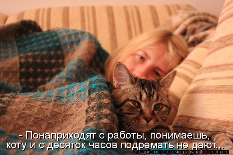 Котоматрица: - Понаприходят с работы, понимаешь, коту и с десяток часов подремать не дают...