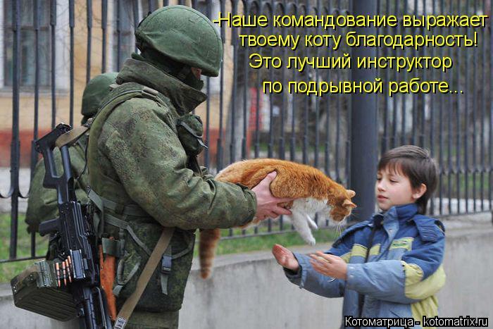 Котоматрица: -Наше командование выражает твоему коту благодарность!  Это лучший инструктор по подрывной работе...