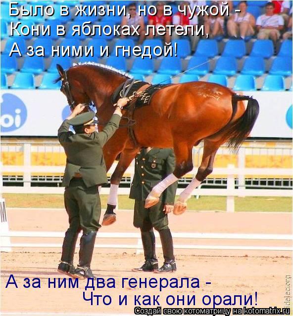 Котоматрица: Было в жизни, но в чужой -  Кони в яблоках летели, А за ними и гнедой! А за ним два генерала -  Что и как они орали!