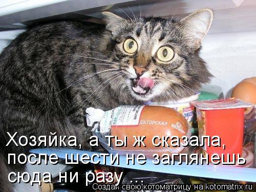 Котоматрица: после шести не заглянешь Хозяйка, а ты ж сказала, сюда ни разу ...