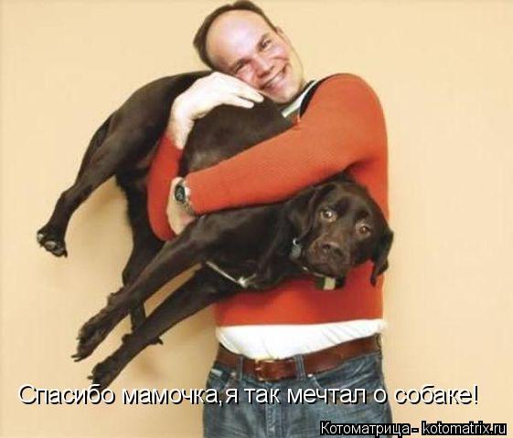 Котоматрица: Спасибо мамочка,я так мечтал о собаке!
