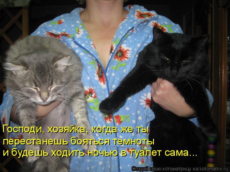 Котоматрица: Господи, хозяйка, когда же ты  перестанешь бояться темноты  и будешь ходить ночью в туалет сама...
