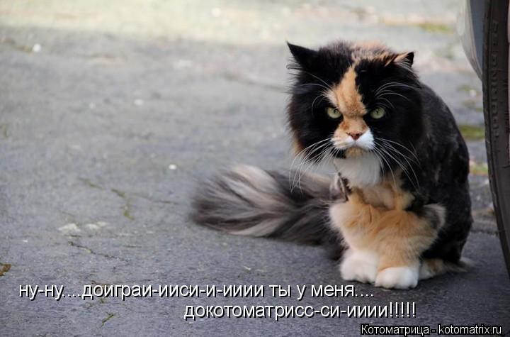 Котоматрица: ну-ну....доиграи-ииси-и-ииии ты у меня.... докотоматрисс-си-ииии!!!!!