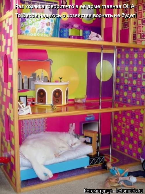 Котоматрица: Раз хозяйка говорит,что в её доме главная ОНА То Барби,надеюсь,о хозяйстве,ворчать не будет!