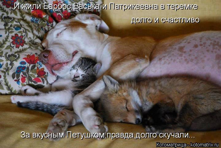Котоматрица: И жили Барбос,Васька и Патрикеевна в теремке долго и счастливо За вкусным Петушком,правда,долго скучали...