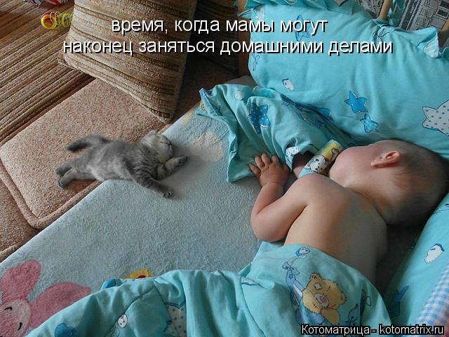 Котоматрица: время, когда мамы могут наконец заняться домашними делами