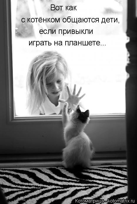 Котоматрица: Вот как с котёнком общаются дети, если привыкли играть на планшете...