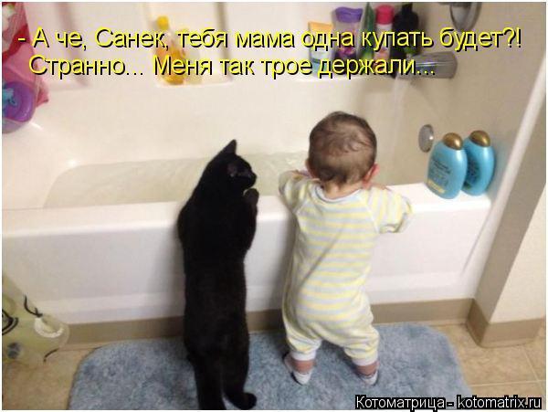 Котоматрица: - А че, Санек, тебя мама одна купать будет?! Странно... Меня так трое держали...
