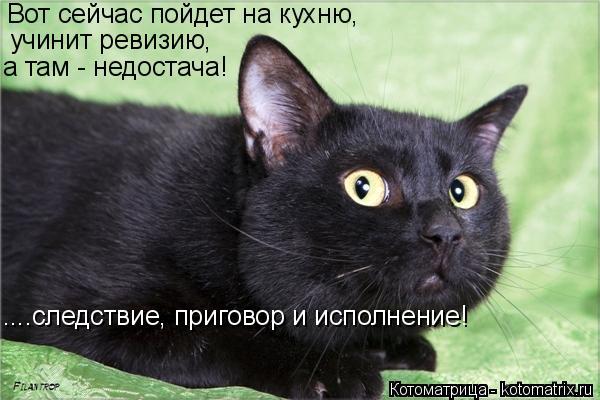 Котоматрица: Вот сейчас пойдет на кухню, учинит ревизию, а там - недостача! ....следствие, приговор и исполнение!
