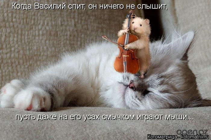 Котоматрица: Когда Василий спит, он ничего не слышит, пусть даже на его усах смычком играют мыши...