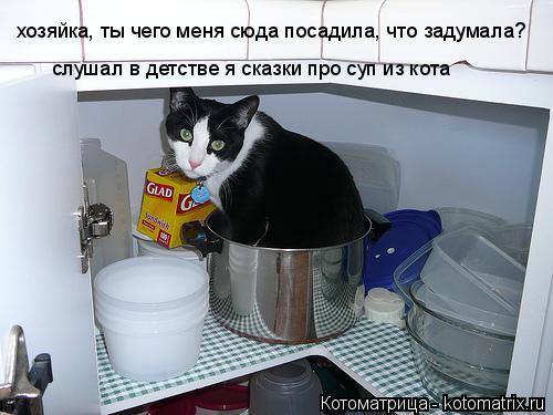 Котоматрица: хозяйка, ты чего меня сюда посадила, что задумала? слушал в детстве я сказки про суп из кота