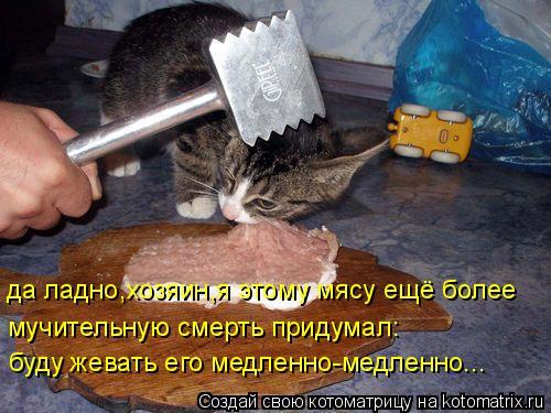 Котоматрица: да ладно,хозяин,я этому мясу ещё более мучительную смерть придумал: буду жевать его медленно-медленно...