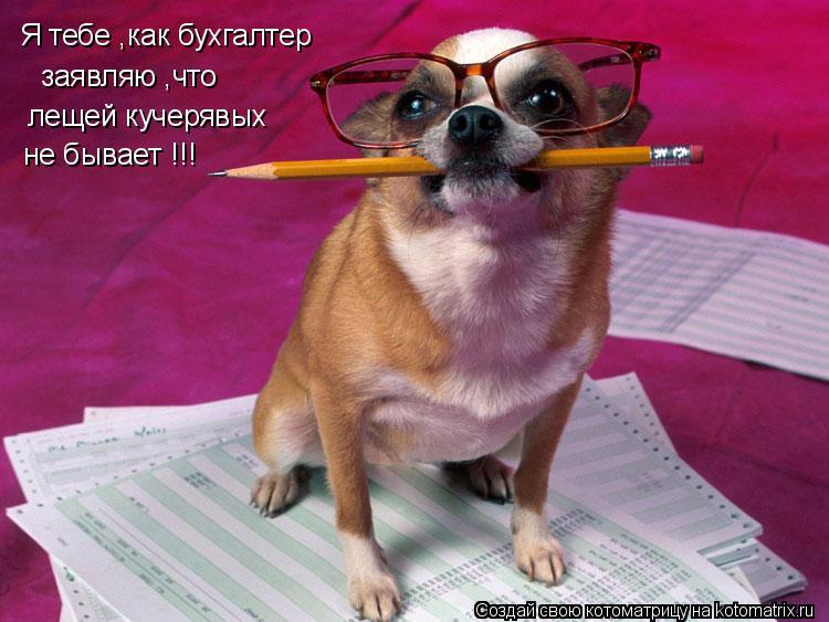 Котоматрица: Я тебе ,как бухгалтер  заявляю ,что лещей кучерявых  не бывает !!!