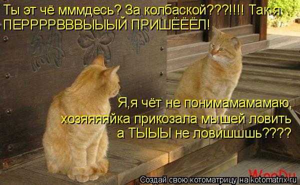 Котоматрица: Ты эт чё мммдесь? За колбаской???!!!! Так я  ПЕРРРРВВВЫЫЫЙ ПРИШЁЁЁЛ! Я,я чёт не понимамамамаю, хозяяяяйка прикозала мышей ловить а ТЫЫЫ не ловиш