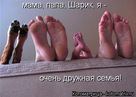 Котоматрица: мама, папа, Шарик, я -  очень дружная семья!
