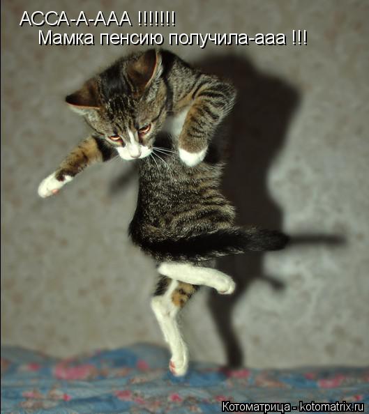Котоматрица: АССА-А-ААА !!!!!!! Мамка пенсию получила-ааа !!!
