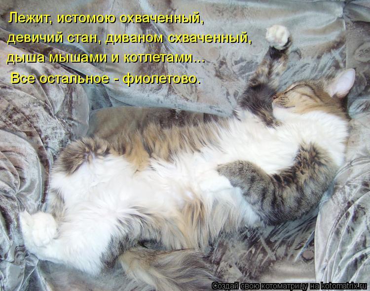 Котоматрица: Лежит, истомою охваченный,  девичий стан, диваном схваченный, дыша мышами и котлетами...  Все остальное - фиолетово.