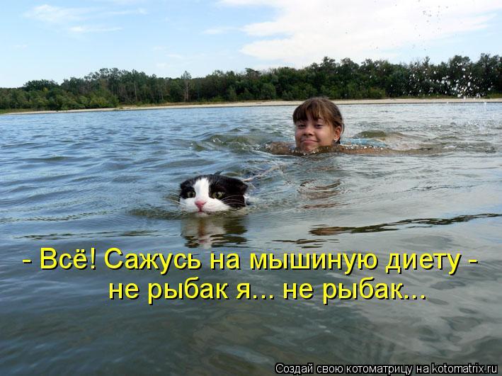Котоматрица: - Всё! Сажусь на мышиную диету -  не рыбак я... не рыбак...