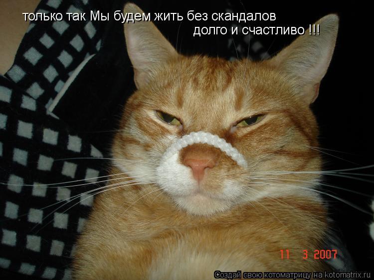 Котоматрица: только так Мы будем жить без скандалов  долго и счастливо !!!