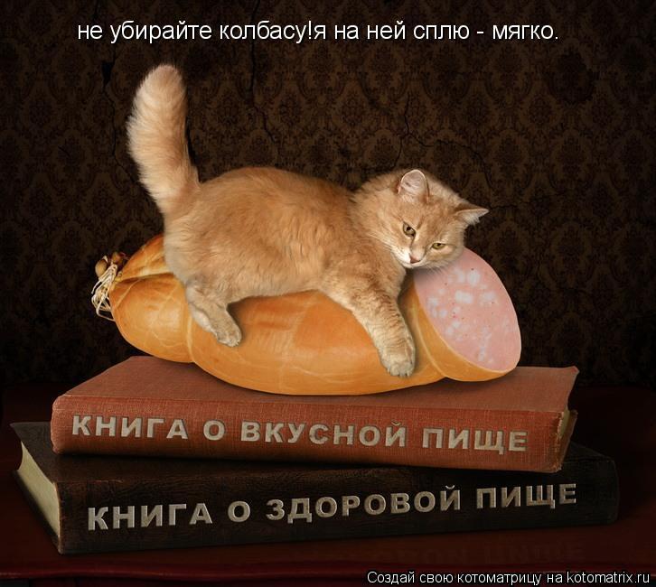 Котоматрица: не убирайте колбасу!я на ней сплю - мягко.