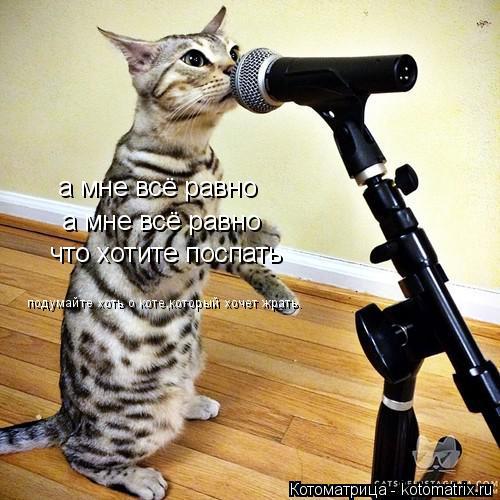Котоматрица: а мне всё равно а мне всё равно а мне всё равно что хотите поспать подумайте хоть о коте,который хочет жрать.