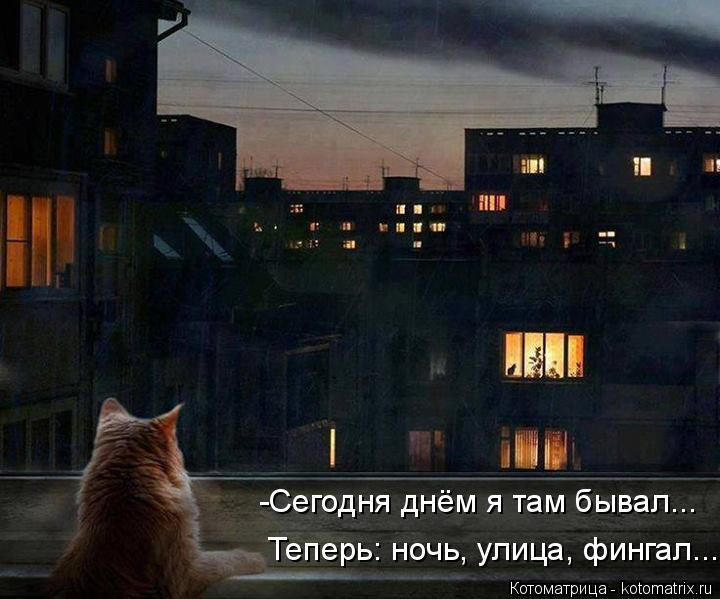 Котоматрица: -Сегодня днём я там бывал... Теперь: ночь, улица, фингал...