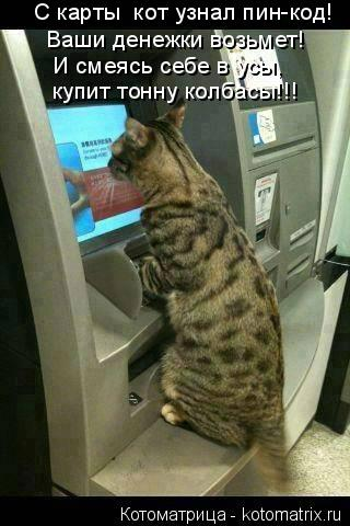 Котоматрица: И смеясь себе в усы, купит тонну колбасы!!!  С карты  кот узнал пин-код! Ваши денежки возьмет!