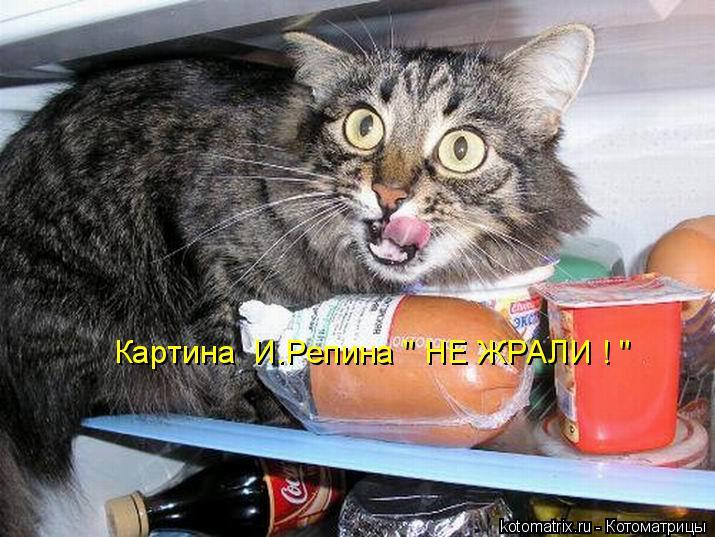 """Котоматрица: Картина  И.Репина """" НЕ ЖРАЛИ ! """""""