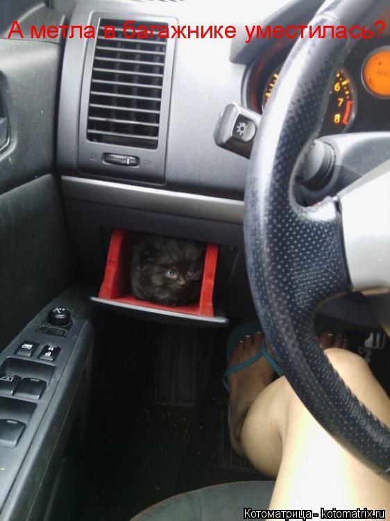 Котоматрица: А метла в багажнике уместилась?