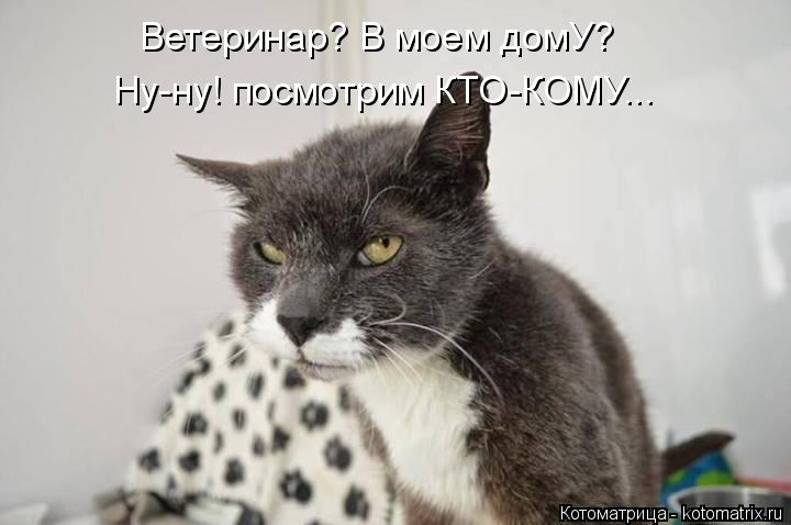 Котоматрица: Ветеринар? В моем домУ? Ну-ну! посмотрим КТО-КОМУ...