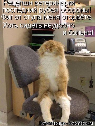 Котоматрица: Рецепшн ветеринарки -  последний рубеж обороны! Фиг от стула меня оторвёте, Хоть сидеть неудобно  и больно!