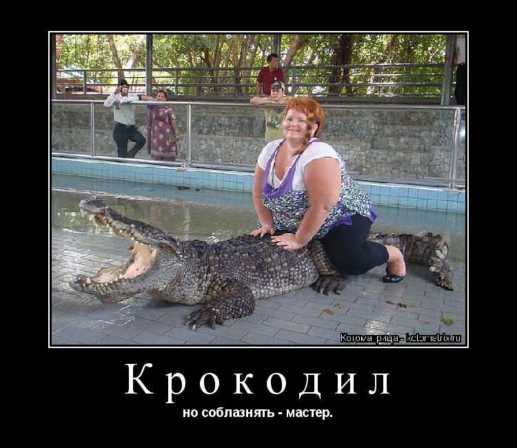 Котоматрица: Крокодил но соблазнять - мастер.