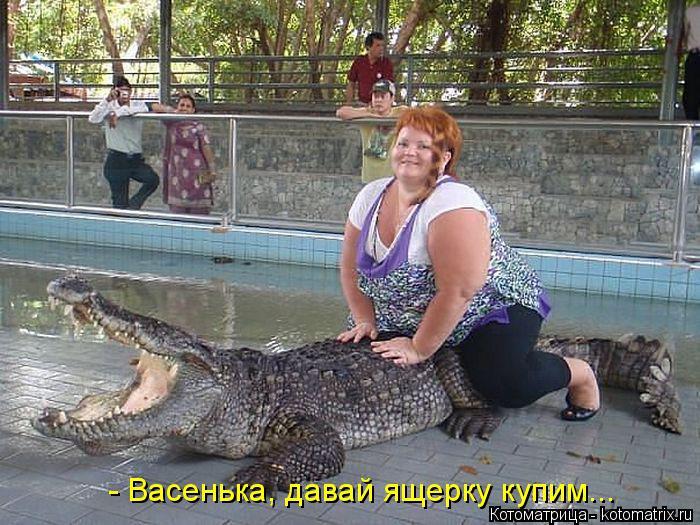 Котоматрица: - Васенька, давай ящерку купим...