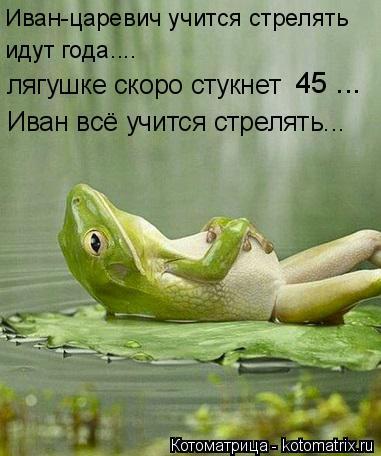 Котоматрица: Иван-царевич учится стрелять идут года.... лягушке скоро стукнет  45 ... Иван всё учится стрелять...