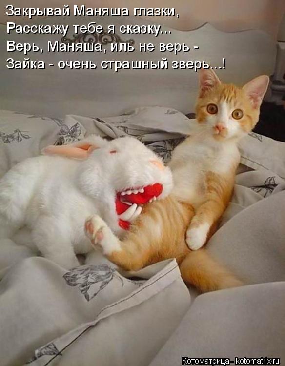 Котоматрица: Закрывай Маняша глазки, Расскажу тебе я сказку... Верь, Маняша, иль не верь - Зайка - очень страшный зверь...!