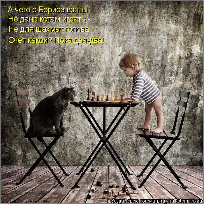 Котоматрица: А чего с Бориса взять! Не дано котам играть - Не для шахмат голова... Счёт какой? Пока два-два!