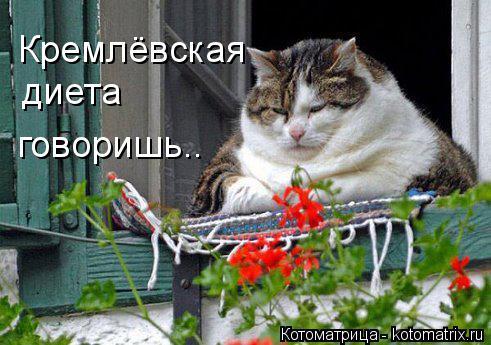 Котоматрица: Кремлёвская диета говоришь..
