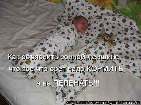 Котоматрица: Как объяснить сонной женщине,  что все что орет надо КОРМИТЬ, а не ПЕЛЕНАТЬ!!!