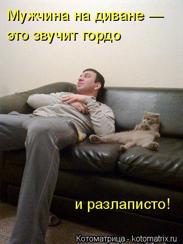 Котоматрица: Мужчина на диване — это звучит гордо  и разлаписто!