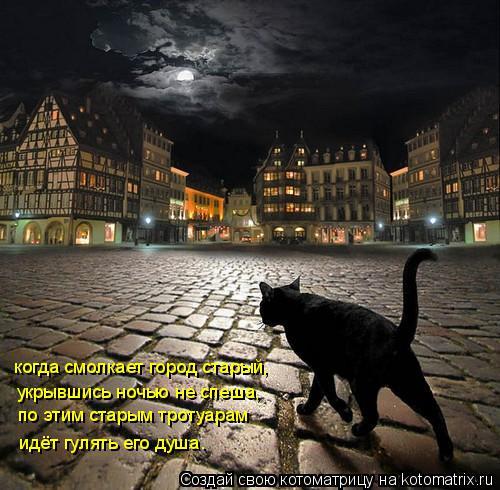 Котоматрица: когда смолкает город старый, укрывшись ночью не спеша, по этим старым тротуарам идёт гулять его душа.