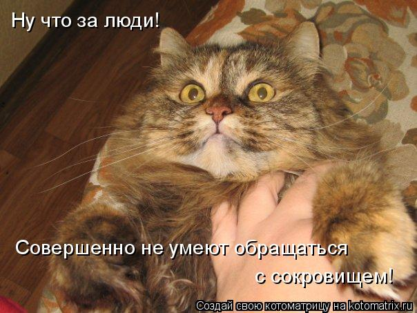 Котоматрица: Ну что за люди!  Совершенно не умеют обращаться  с сокровищем!