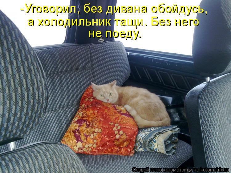 Котоматрица: -Уговорил, без дивана обойдусь,  а холодильник тащи. Без него  не поеду.