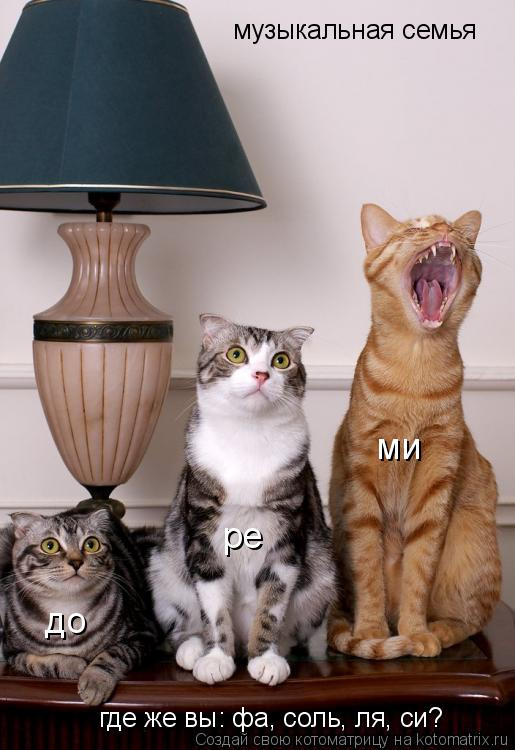 Котоматрица: музыкальная семья до ре ми где же вы: фа, соль, ля, си?