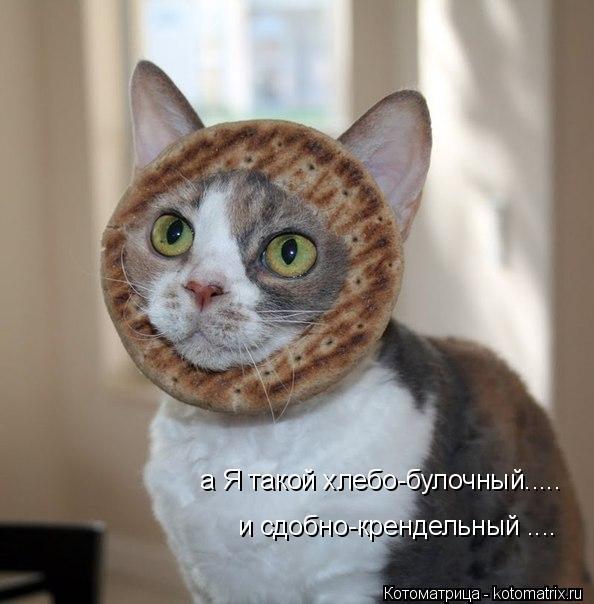 Котоматрица: и сдобно-крендельный .... а Я такой хлебо-булочный.....