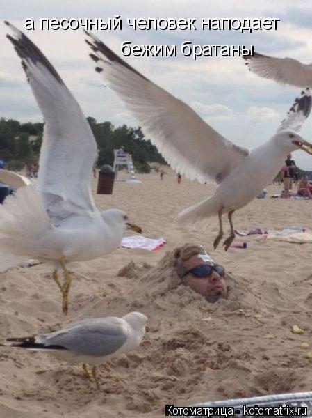 Котоматрица: а песочный человек наподает бежим братаны  бежим братаны
