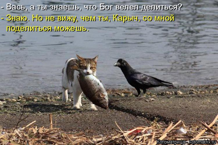 Котоматрица: - Вась, а ты знаешь, что Бог велел делиться? - Знаю. Но не вижу, чем ты, Карыч, со мной  поделиться можешь.