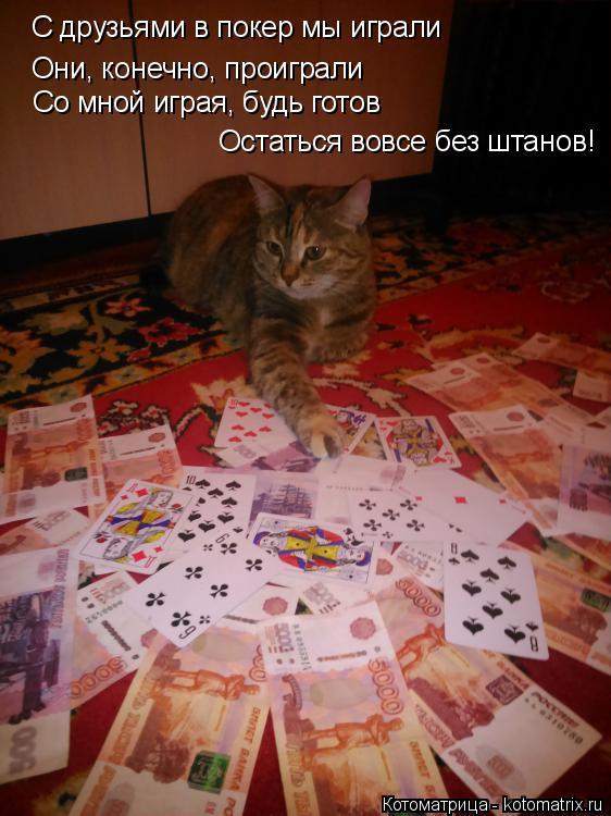 Котоматрица: С друзьями в покер мы играли Они, конечно, проиграли  Со мной играя, будь готов  Остаться вовсе без штанов!
