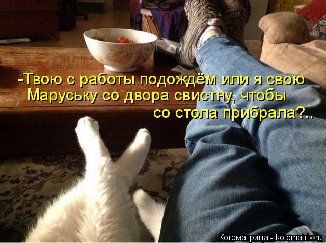 Котоматрица: -Твою с работы подождём или я свою Маруську со двора свистну, чтобы  со стола прибрала?..